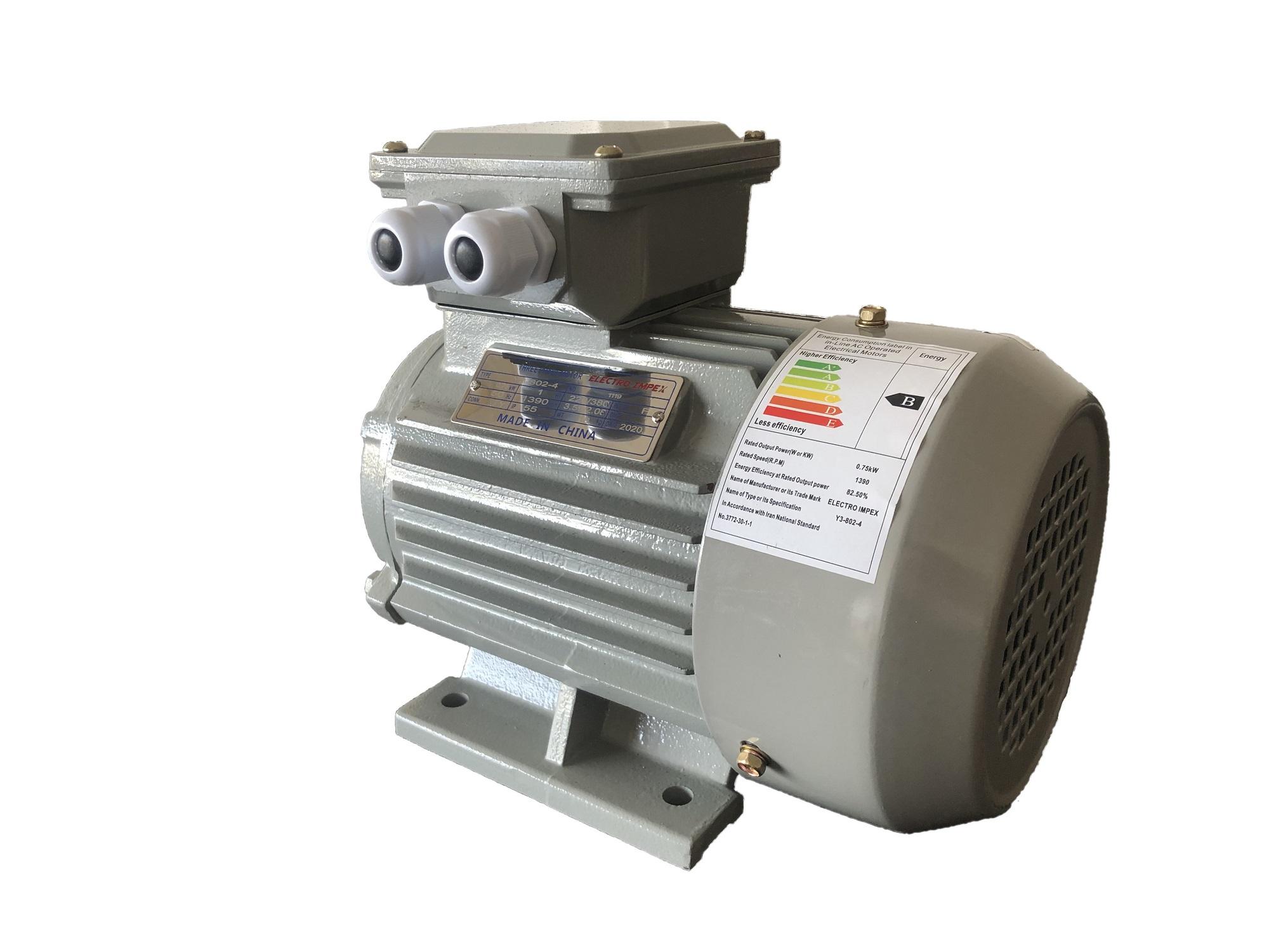 الکتروموتور سه فاز 20 اسب 1400 دور پایه دار Y3-160L-4 برند الکتروایمپکس